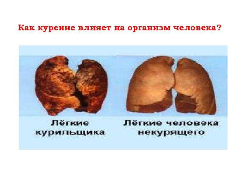 Презентация Как курение влияет на организм человека