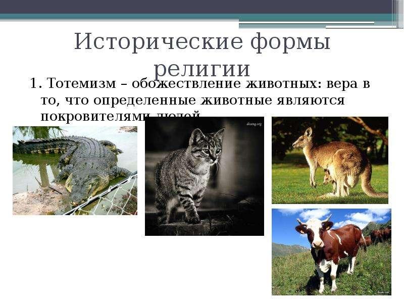 Исторические формы религии 1. Тотемизм – обожествление животных: вера в то, что определенные животны