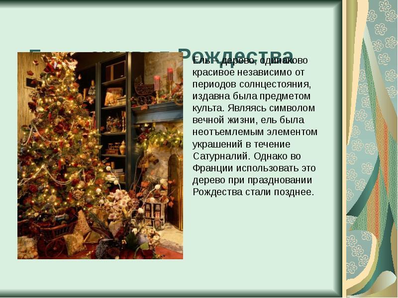 Ель – символ Рождества Ель – дерево, одинаково красивое независимо от периодов солнцестояния, издавн