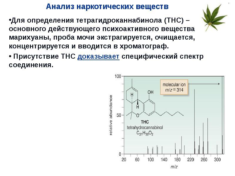 Хроматография для марихуаны как правильно ухаживать за кустами конопли