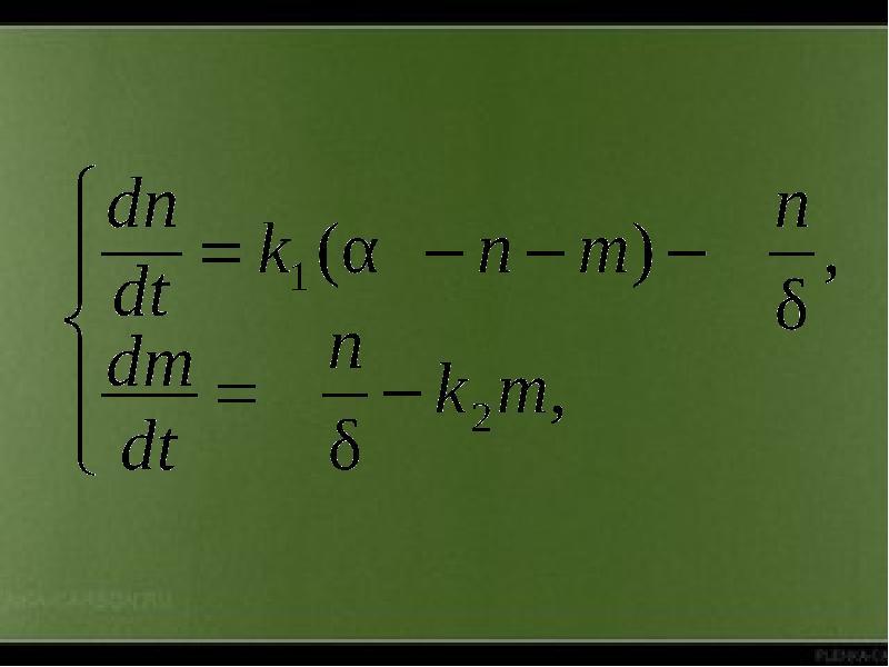 Математическое моделирование биофизических процессов, слайд 12