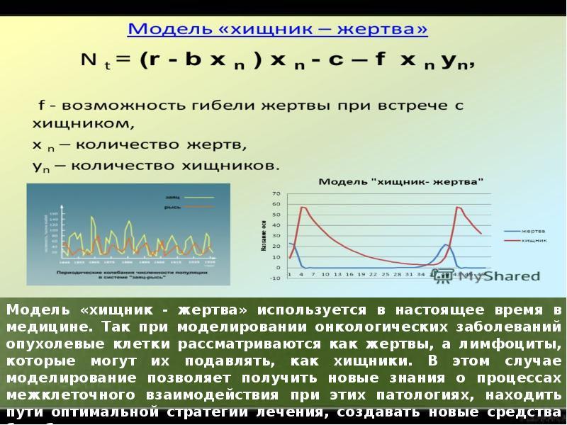 Математическое моделирование биофизических процессов, слайд 16