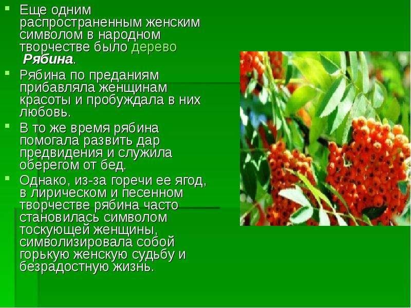 Еще одним распространенным женским символом в народном творчестве было дерево Рябина. Еще одним расп