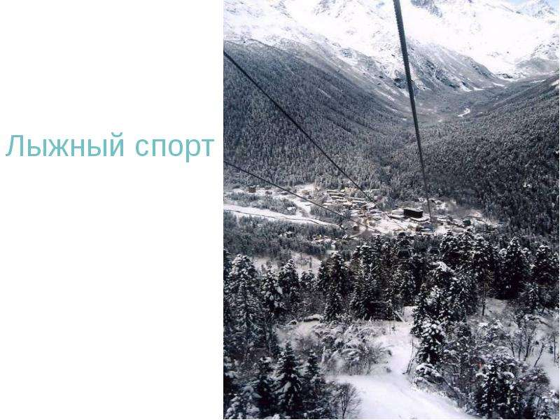 Лыжный спорт Лыжный спорт
