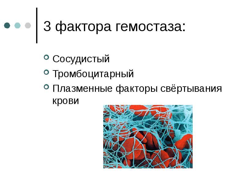 3 фактора гемостаза: Сосудистый Тромбоцитарный Плазменные факторы свёртывания крови