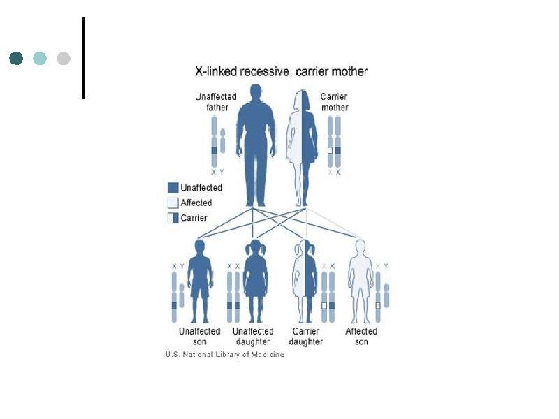 Заболевания органов пищеварения у детей. Гельминтозы. Заболевания системы крови, слайд 68