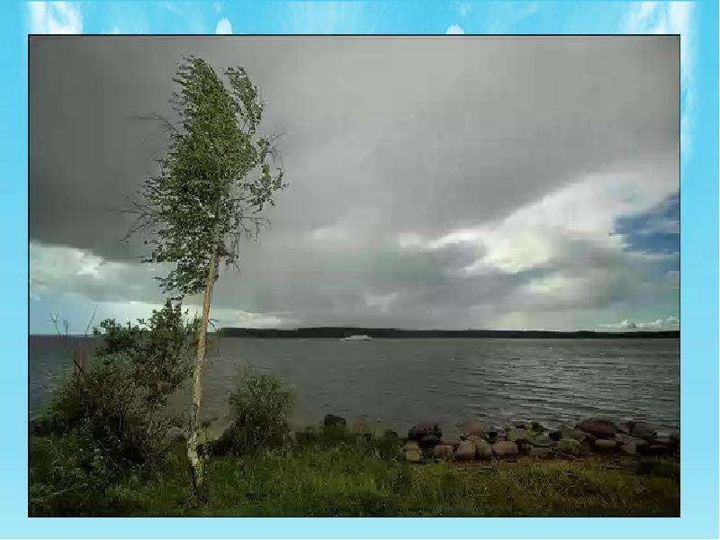 Климат Тверской области умеренно континентальный, переходный от континентального восточных районов е