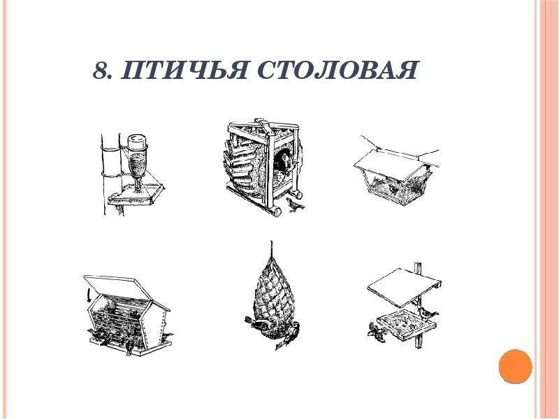 8. Птичья столовая