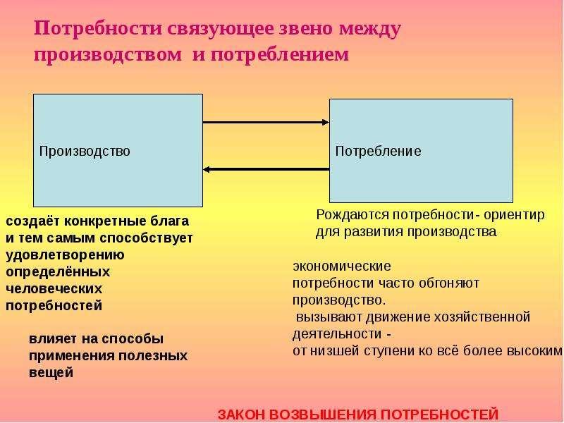 Потребности связующее звено между производством и потреблением