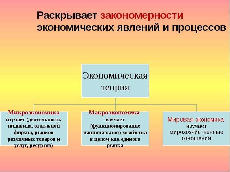 Раскрывает закономерности экономических явлений и процессов