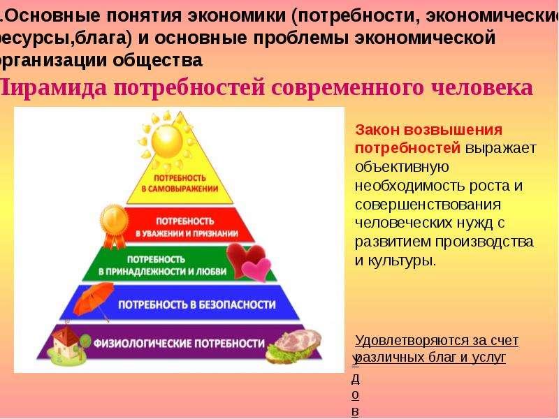 1. Основные понятия экономики (потребности, экономические ресурсы,блага) и основные проблемы экономи