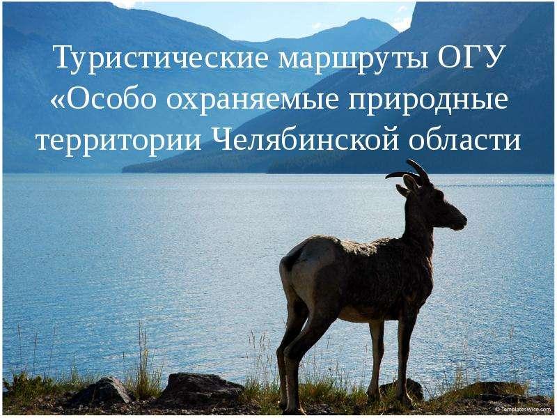 Презентация Туристические маршруты ОГУ «Особо охраняемые природные территории Челябинской области»
