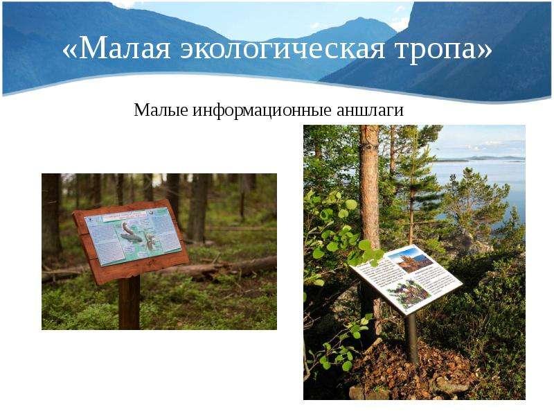 «Малая экологическая тропа» Малые информационные аншлаги