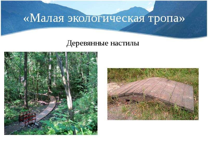 «Малая экологическая тропа» Деревянные настилы