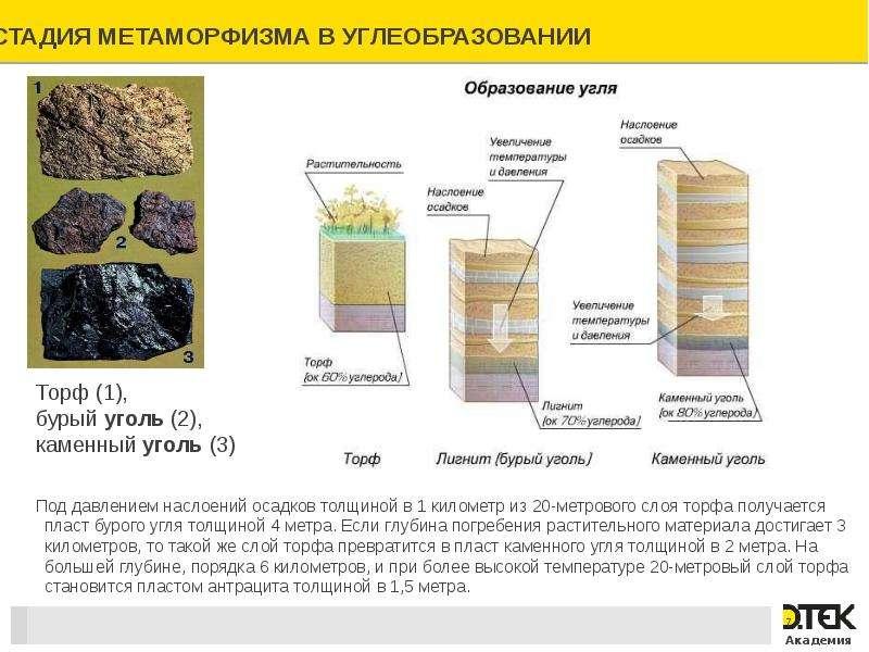 Безопасность работ на угольных пластах, склонных к газодинамическим явлениям, слайд 7