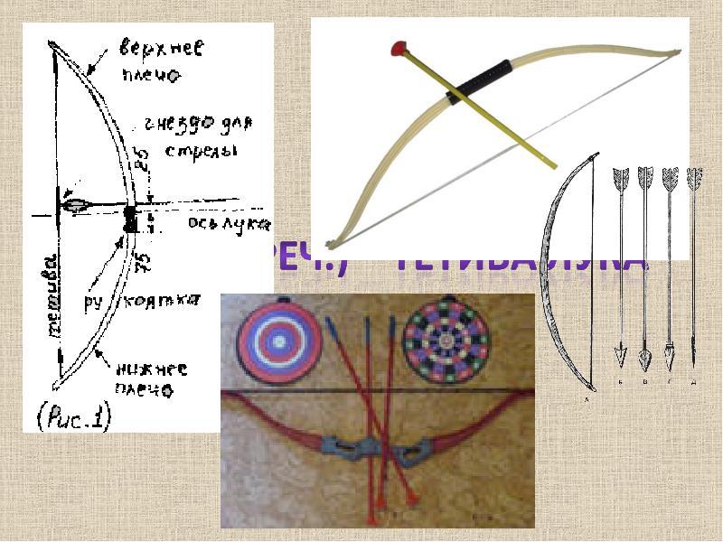 Окружность и ее элементы. Замечательные линии окружности, слайд 10