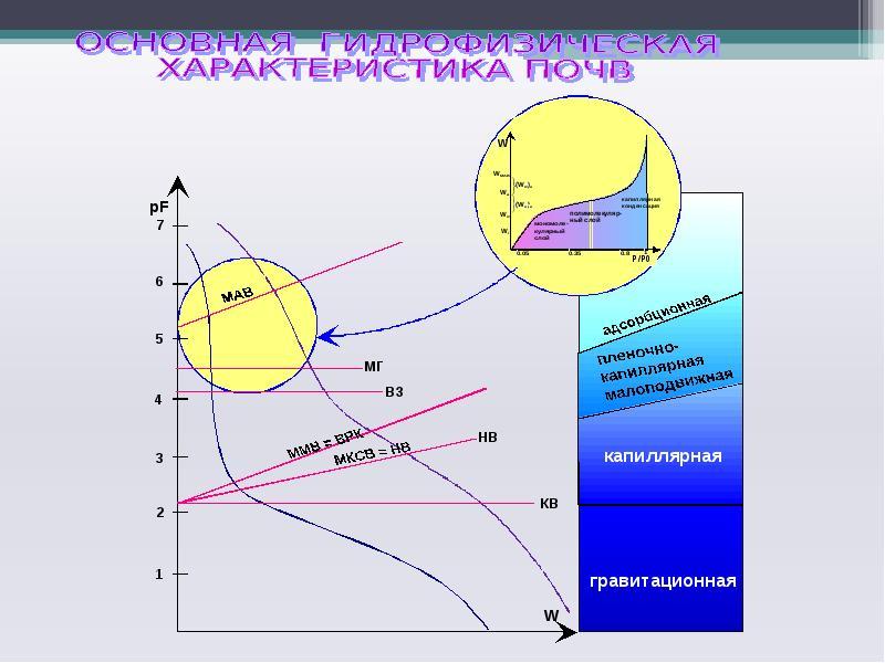 Твердая фаза и поровое пространство почв. Основная гидрофизическая характеристика, слайд 18