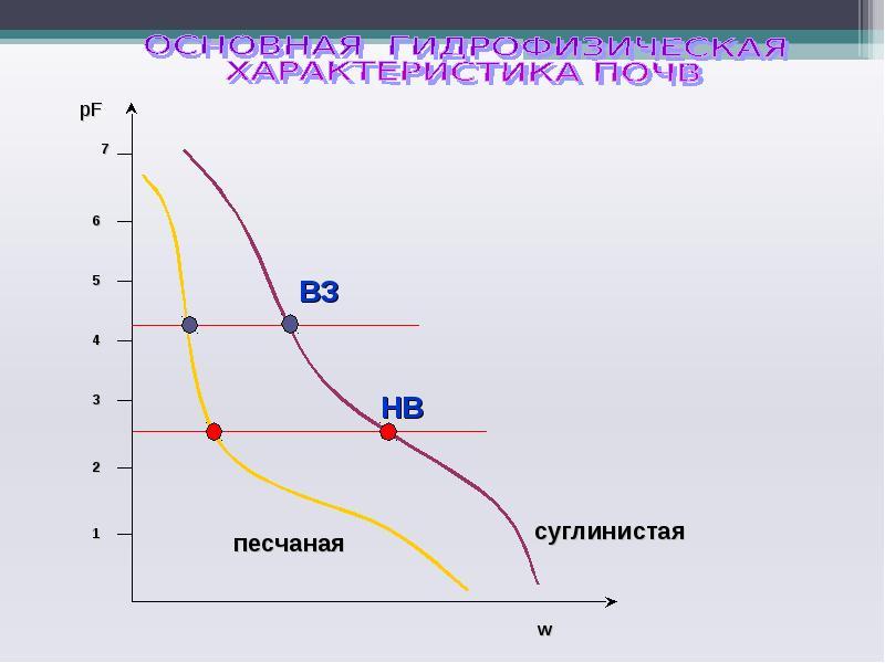 Твердая фаза и поровое пространство почв. Основная гидрофизическая характеристика, слайд 19