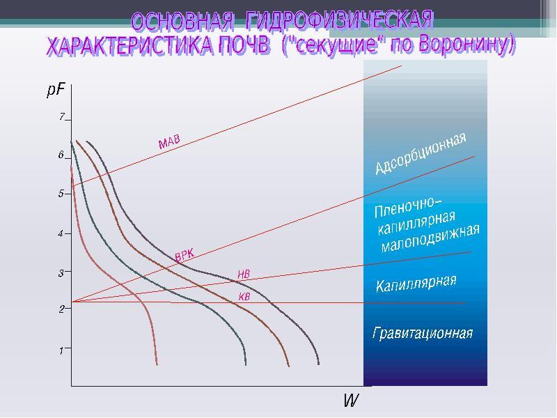 Твердая фаза и поровое пространство почв. Основная гидрофизическая характеристика, слайд 20