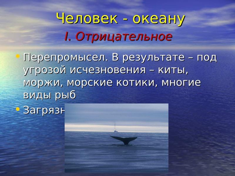 сколько процентов занимает мировой океан