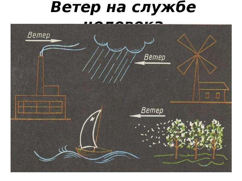 Ветер на службе человека