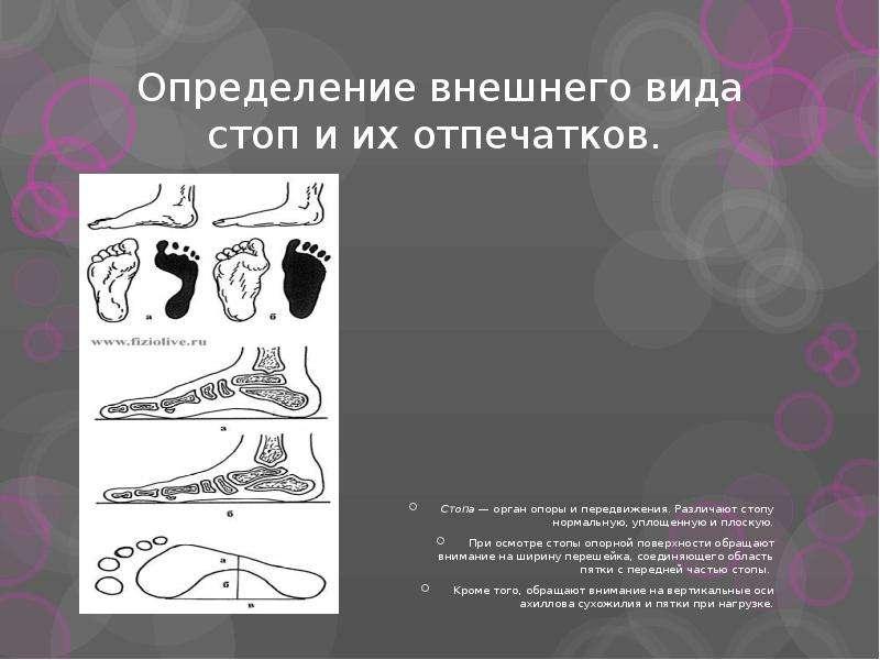 Определение внешнего вида стоп и их отпечатков. Стопа — орган опоры и передвижения. Различают стопу