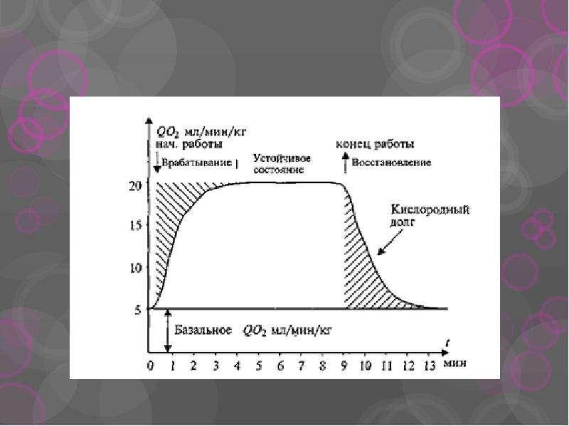 Влияние физических нагрузок на организм, слайд 66