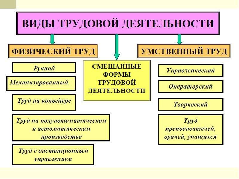Основы физиологии труда и обеспечение рациональных производственных условий труда, слайд 2