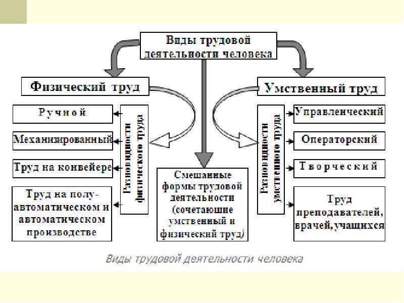Основы физиологии труда и обеспечение рациональных производственных условий труда, слайд 15