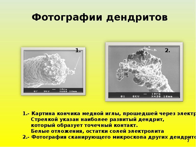 Фотографии дендритов