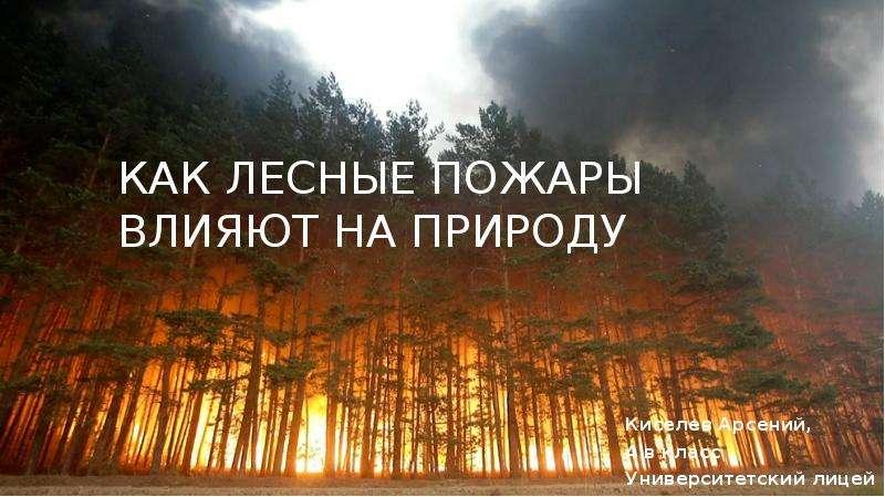 Презентация Как лесные пожары влияют на природу