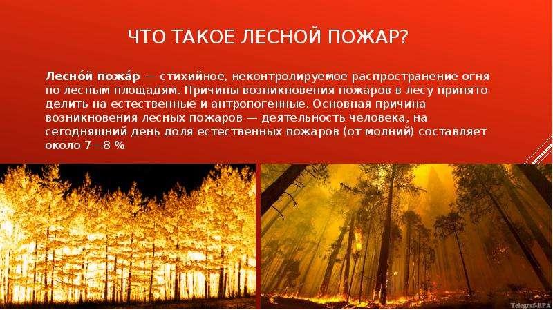 Что такое лесной пожар? Лесно́й пожа́р — стихийное, неконтролируемое распространение огня по лесным