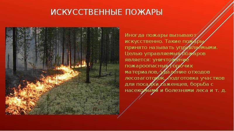 Искусственные пожары Иногда пожары вызывают искусственно. Такие пожары принято называть управляемыми