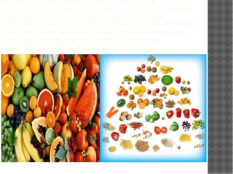 Роль витаминов в обеспечении нормальной жизнедеятельности организма человека очень значительна. Они