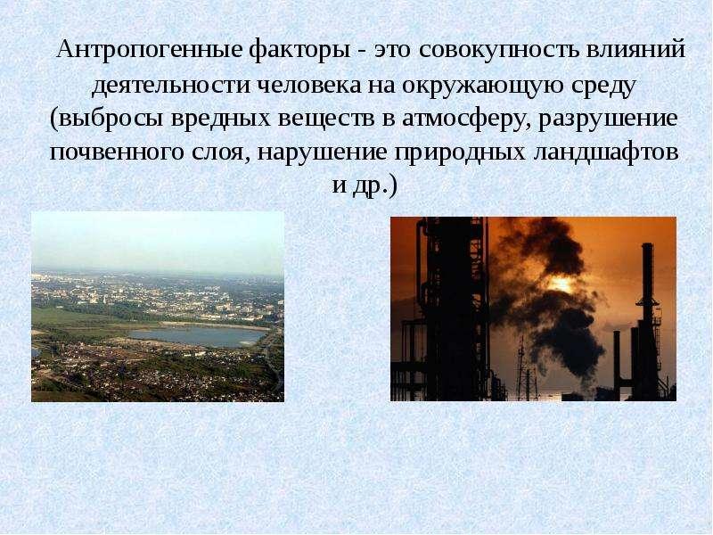 Антропогенные факторы - это совокупность влияний деятельности человека на окружающую среду (выбросы