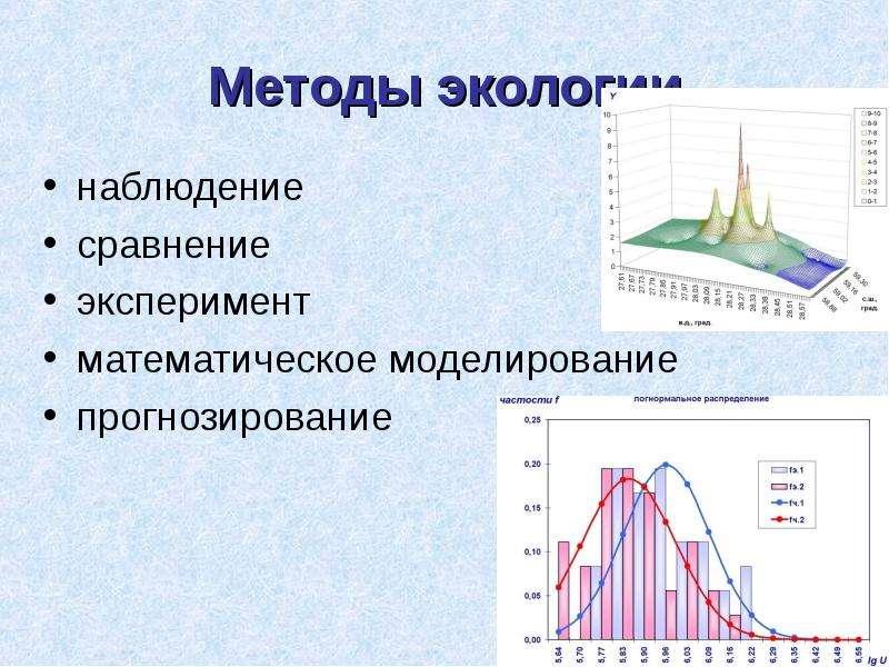 Методы экологии наблюдение сравнение эксперимент математическое моделирование прогнозирование