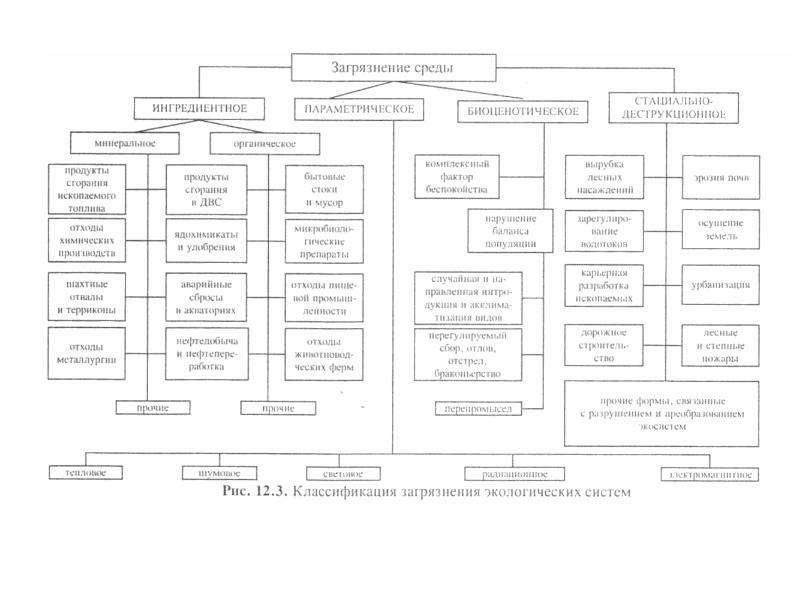 Биосфера как глобальная экосистема. Экологические проблемы биосферы, слайд 37