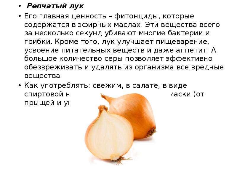 Репчатый лук Репчатый лук Его главная ценность – фитонциды, которые содержатся в эфирных маслах. Эти