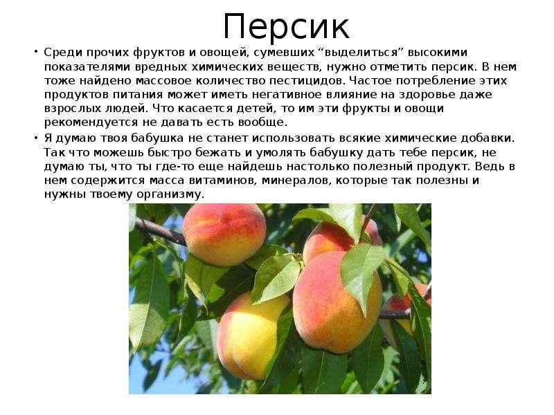 """Персик Среди прочих фруктов и овощей, сумевших """"выделиться"""" высокими показателями вредных химических"""
