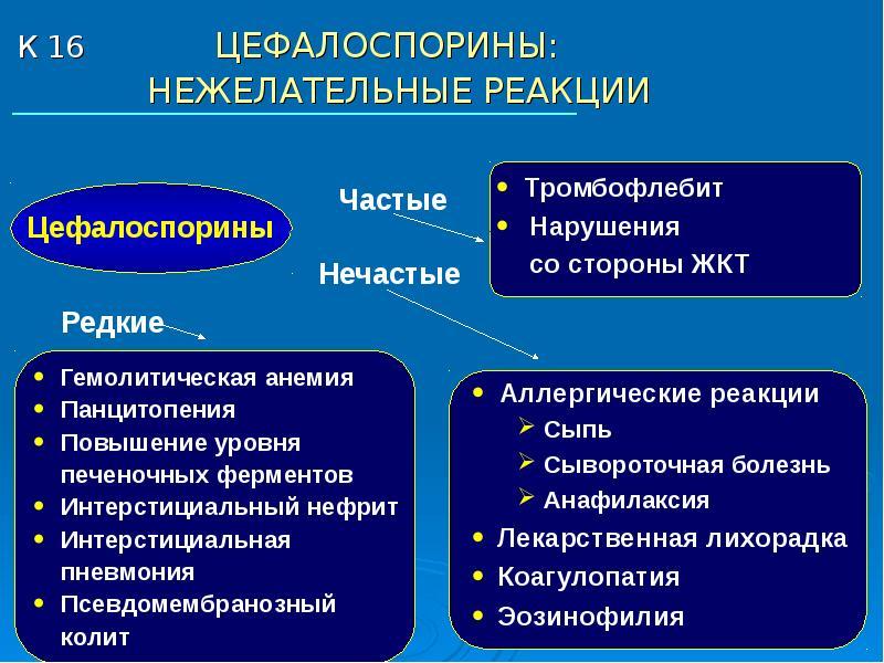 Многообразие противоинфекционных препаратов, слайд 16