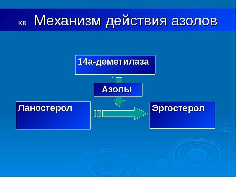 К8 Механизм действия азолов