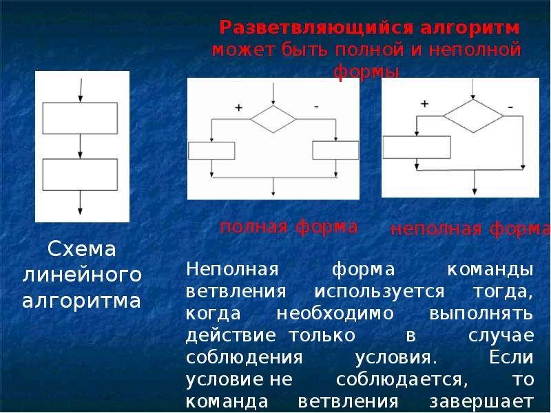 Алгоритмизация и основы программирования, слайд 13