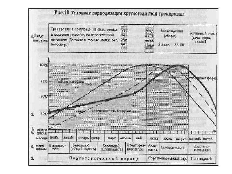 Теория и методика физического воспитания и спорта, слайд 45