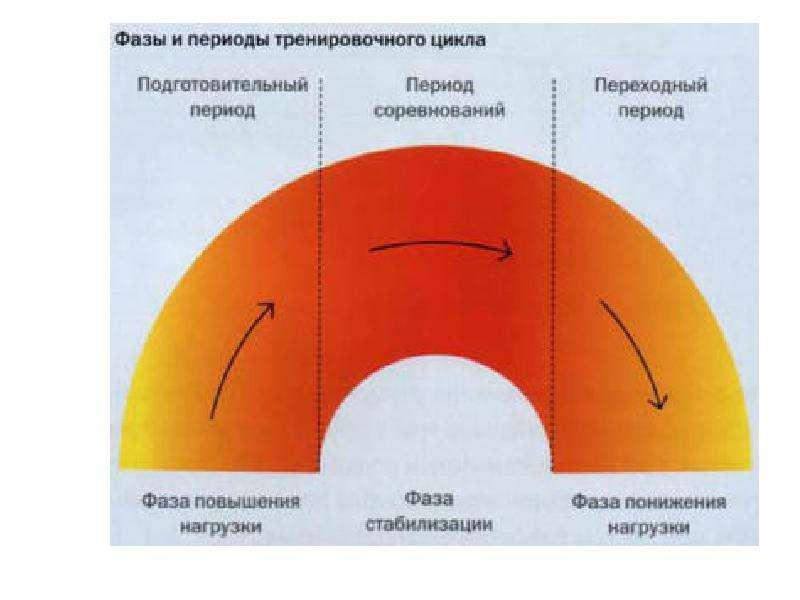 Теория и методика физического воспитания и спорта, слайд 47