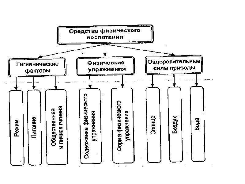 Теория и методика физического воспитания и спорта, слайд 9