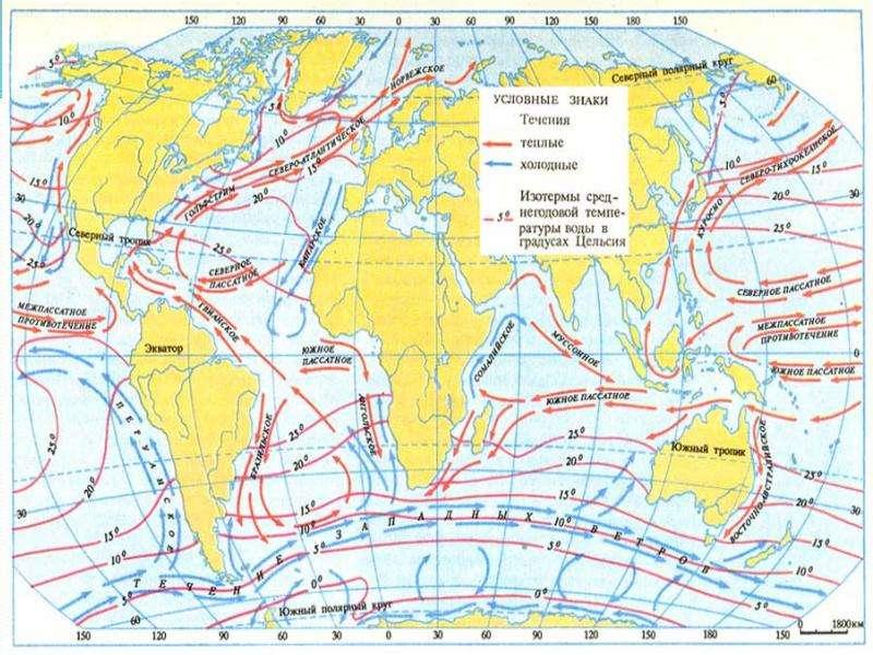 Теплые и холодные течения Мирового океана, слайд 8