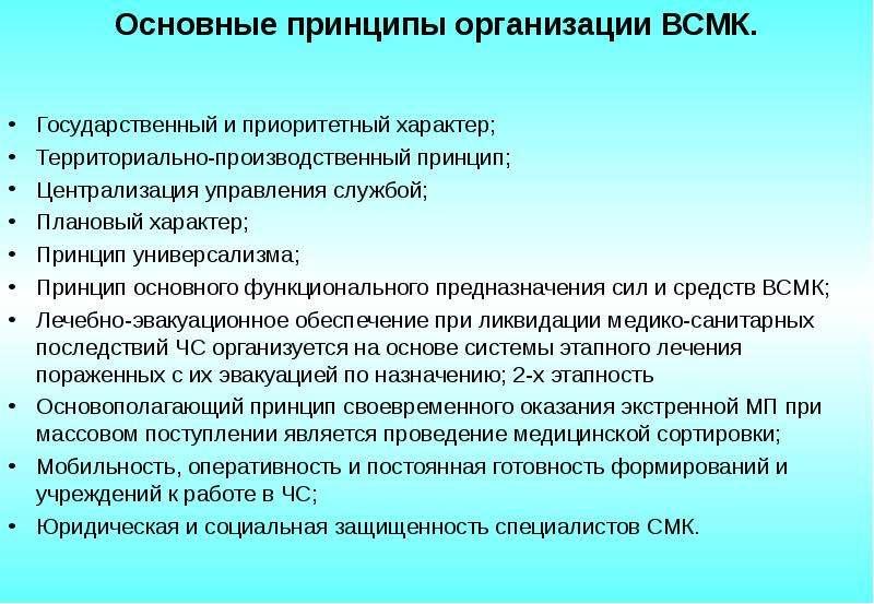Основные принципы организации ВСМК. Государственный и приоритетный характер; Территориально-производ