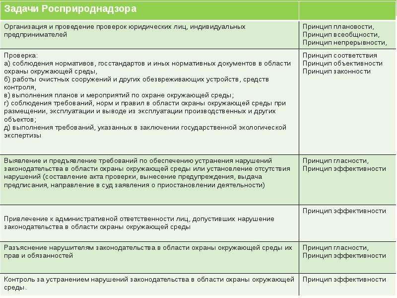 Контрольная (надзорная) деятельность Федеральной службы по надзору в сфере природопользования (Росприроднадзор), слайд 4