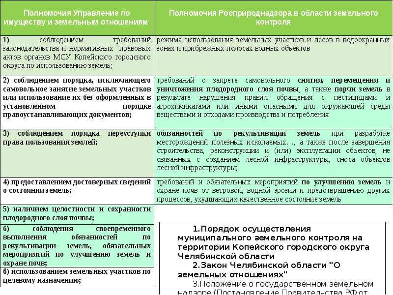 Контрольная (надзорная) деятельность Федеральной службы по надзору в сфере природопользования (Росприроднадзор), слайд 8