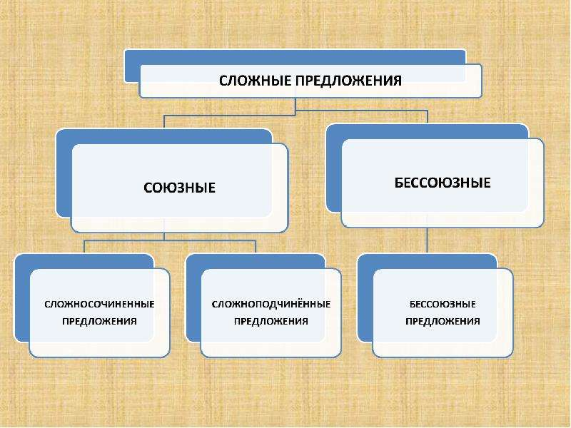 Сложносочинённые и сложноподчинённые предложения, слайд 5
